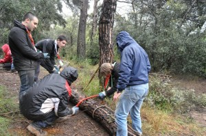 A Community Service Project under Heavy Rain